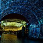 Norwich Tunnel of light-18