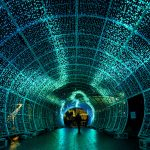 Norwich Tunnel of light-22
