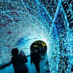 Norwich Tunnel of light-4 (2)