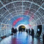Norwich Tunnel of light-6