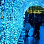 Norwich Tunnel of light-7