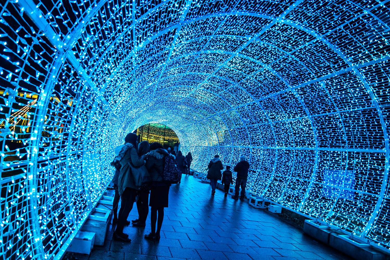Norwich Tunnel of light-8