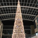 15m Tree 2