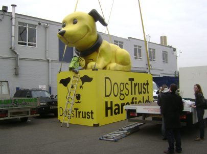 dogcilla dog trust