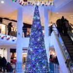 tree sparkle